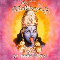 Nina Hagen-Om Namah Shivay! (2CD,Re-released 2002 )