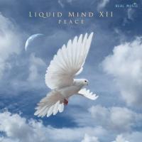 Liquid Mind-Liquid MInd XII Peace