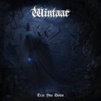 Wintaar-Tear You Down