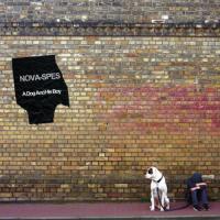 Nova-Spes-A Dog And His Boy