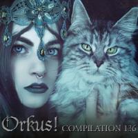 VA-Orkus Compilation 136