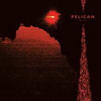 Pelican-Nighttime Stories
