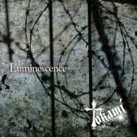 Tokami-Luminescence