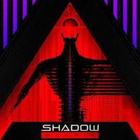 Shadow Domain-Digital Divide