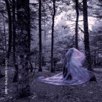 Grey Gallows - Shades mp3