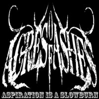 Acres Of Ashes-Aspiration Is A Slowburn