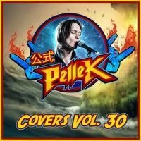 PelleK-Covers, Vol. 30
