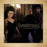 Evanescence-Call Me When You\'re Sober