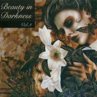 VA-Beauty In Darkness Vol. 3