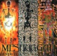Meshuggah-Destroy Erase Improve & Selfcaged (Reloaded 2008)