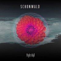 Schonwald-Night Idyll