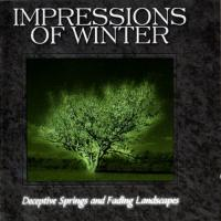 Impressions Of Winter-Deceptive Springs And Fading Landscapes