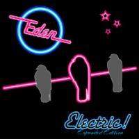 Eden-Electric! (Expanded Edition)