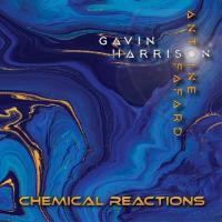 Gavin Harrison & Antoine Fafard-Chemical Reactions