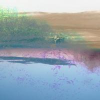 Oaks Of Bethel-Lakes In The Dry Season