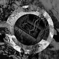 Torpor-Rhetoric of the Image