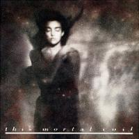 This Mortal Coil-It'll End in Tears