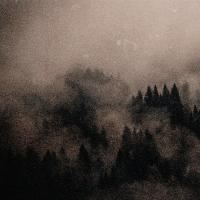 Kaya North-That Comes From The Tree And The Mist