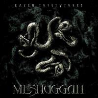 Meshuggah - Catch Thirtythree flac cd cover flac