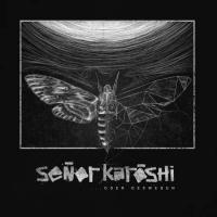Senor Karoshi-...oder deswegen