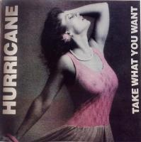 Hurricane-Take What You Want (2008 Remastered)
