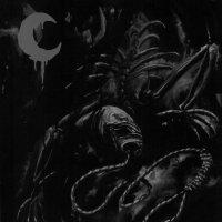 Leviathan-A Silhouette In Splinters