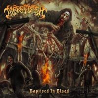 Mereflesh-Baptised in Blood