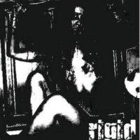 rigid-Uncased