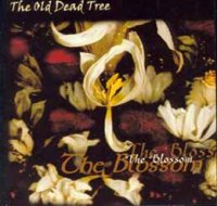 The Old Dead Tree-The Blossom