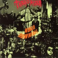 Terrorizer-World Downfall [Vinyl Rip 24/192]