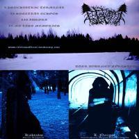 Lifeless-Dark Journey Forested