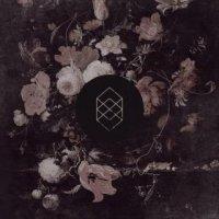 Kokomo-Monochrome Noise Love
