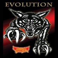 Wild Dogs-Evolution