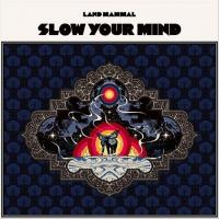 Land Mammal-Slow Your Mind