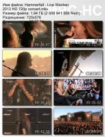 Hammerfall-Live Wacken (HDTV)