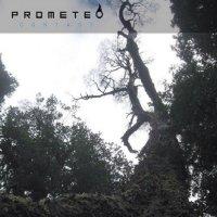 Prometeo-Contact