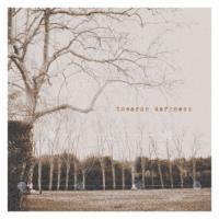 Towards Darkness-Tetrad