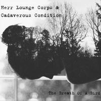 Herr Lounge Corps & Cadaverous Condition-The Breath of a Bird (Collaboration)
