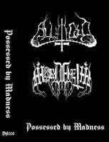 All The Cold / Mordheim-Possessed by Madness (Split)