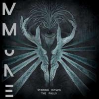 MMune-Staring Down the Falls