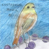 Состояние Птиц-Состояние Птиц\'10