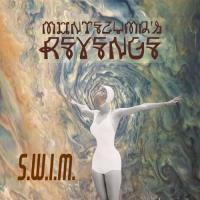 Montezuma's Revenge-S.W.I.M.