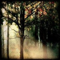 Astarot-El Prana del Bosque