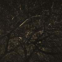 Skogen Tok Sjelen Min-Evig Død