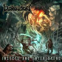 Dissolution-Insects and Interlopers
