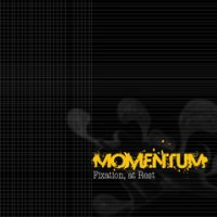 Momentum-Fixation, at Rest