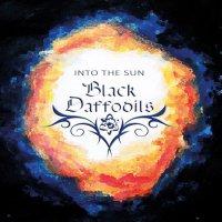 Black Daffodils-Into The Sun