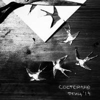 Состояние Птиц-Состояние Птиц\'14