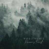 Positronic-Karma's Forest