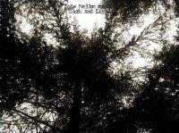 Døde Mellomrom-Dark And Light